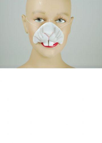 Rabbit Nose-572