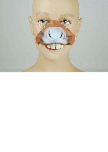 Donkey Nose-576