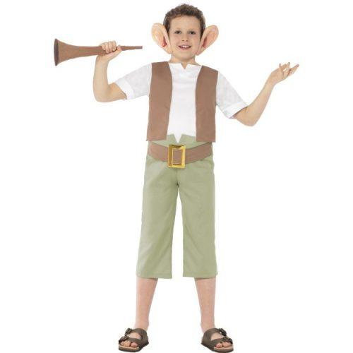 Roald Dahl BFG Costume-0